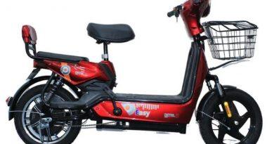 Detel-two-wheeler-electric-vehicle-Detel-Easy