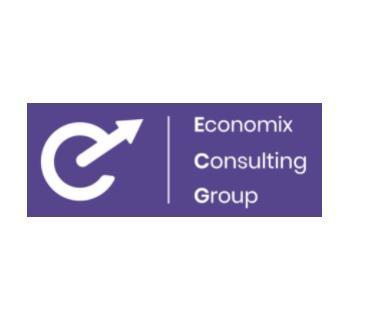 Economix Consulting Group(ECG)
